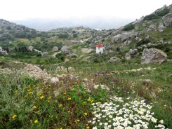 The landscape surrounding the village of Volax