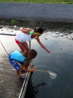 Summer sail09