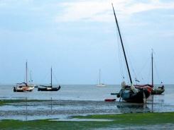 Summer sail19