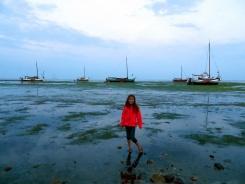 Summer sail20