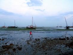 Summer sail21