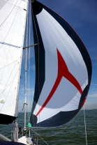 Just the right wind for the spinnaker