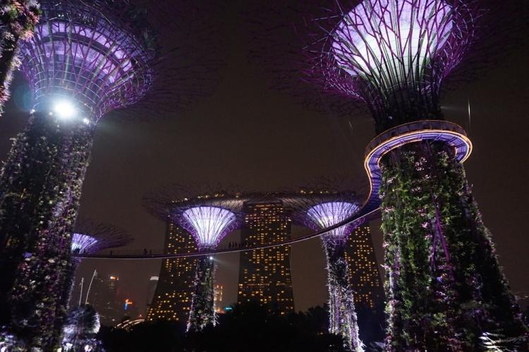 Singapore 2015 08