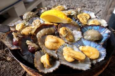 The alien looking (but yummy) limpets